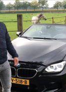 BMW M6 in de schijnwerpers